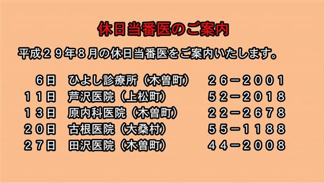 休日当番医のご案内(29年8月)