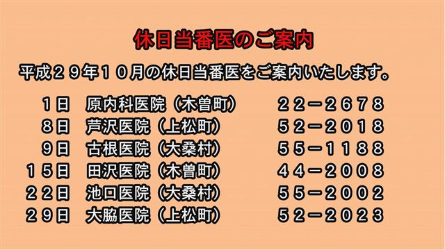 休日当番医のご案内(29年10月)