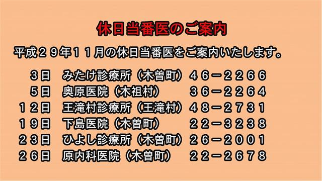 休日当番医のご案内(29年11月)